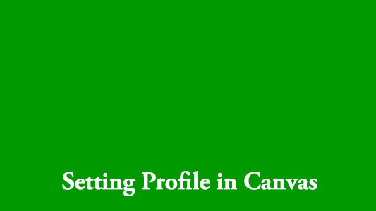 Setting Profile in Canvas